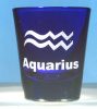 Zodiac Shot Glass Personalized with Name